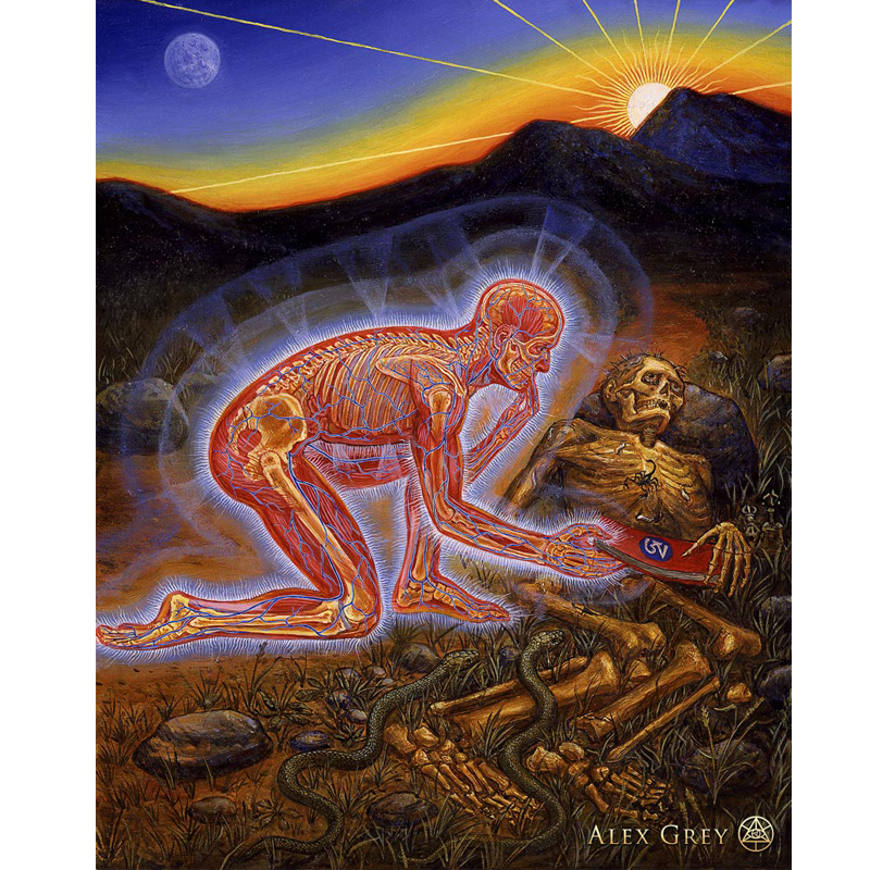 Alex Grey Psychedelic 32x40in Silk Poster King Of Cocaine